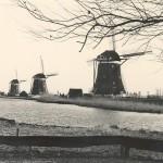 001. Kinderdijk, NL
