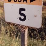 006. Camargue - bord slakken