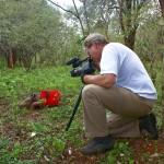 035. Ko filmt zwarte neushoorn Maalim - foto:  Betty-Lou Luyken