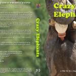 orphans - Crazy Elephants