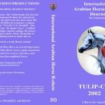 Arabische paarden - Tulip Cup 2002