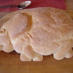 043. olifantenbrood Ithumba - foto: Betty-Lou Luyken