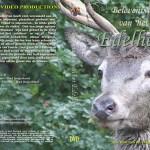 Red deer - adventures