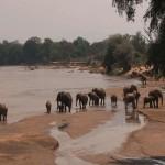 016. Ewaso Ngiro rivier