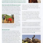 Magazine Dierenstee (HW) - zomer 2018 - oplage 3.500