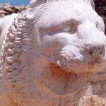 032. lion head