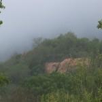 080. mist trekt op