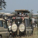 073. circus in the Serengeti