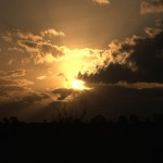 001. zonsondergang over Masai Mara