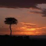 072. sunrise Masai Mara