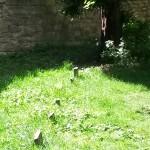 011. begraafplaats gevangenen