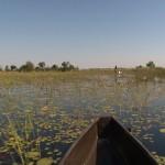 045. Mokoro's doorkruisen Okavango