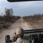 097. Kalahari calls for water