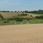 027. Limburg vista