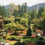 016. Sunken Garden - Vancouver Island