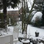 004. winter garden