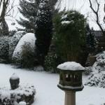 012. snowy garden