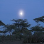 024. moon over Ndutu