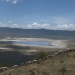132. Lake Magadi in Ngorongoro crater