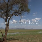 "152. ""THE ENDLESS PLAINS"""