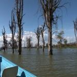 021. Lake Naivasha